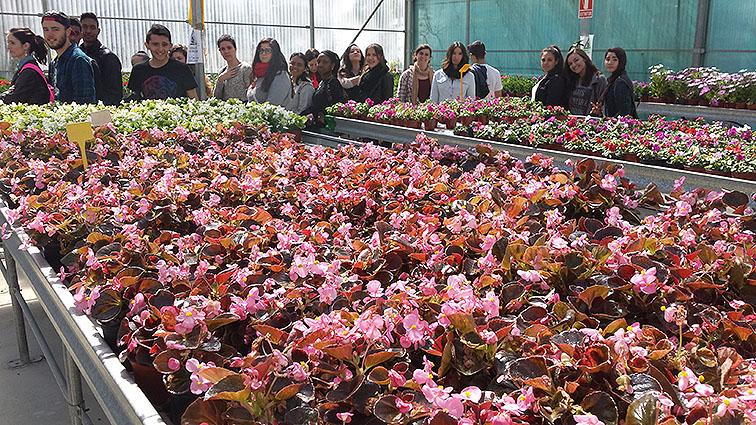 Los alumnos disfrutaron con las plantas que cultivan en el vivero de Aspandem.