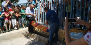 Antonio Bonilla (Alcalde) y Antonio Oliver (Director), enterrando la cápsula.