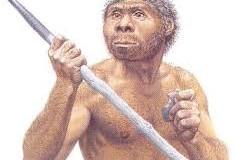 2,8 millones de años de Homos