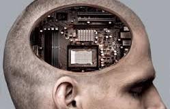 Nuestro cerebro..