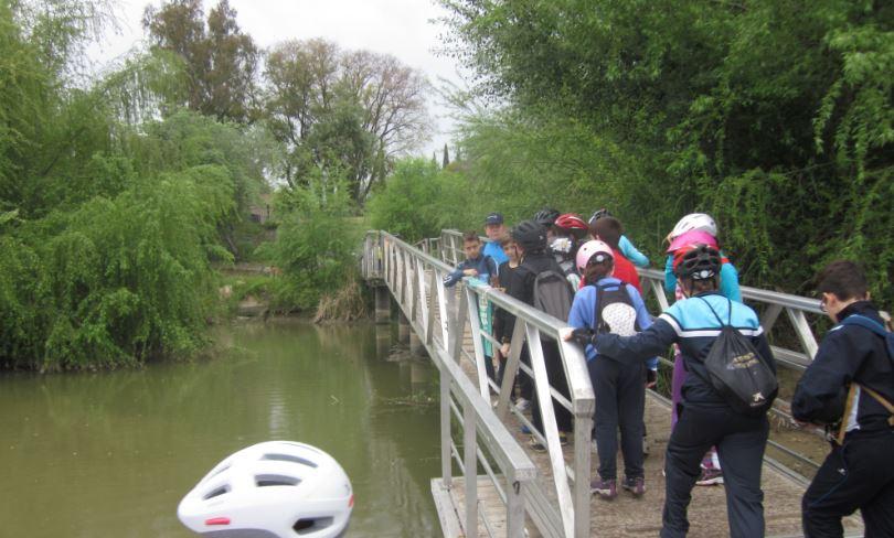 """Experiencias vividas durante la ruta en """"bici"""""""